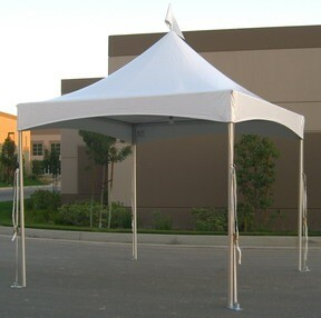 tent 10x10 Festival Top Solid White